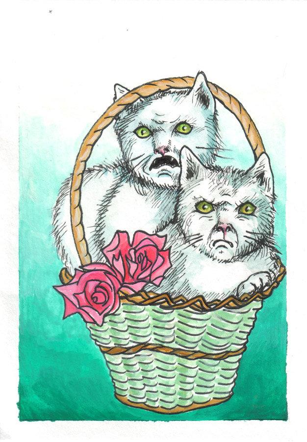 Motze Katzen